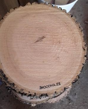 Rodajas de madera con corteza fresca